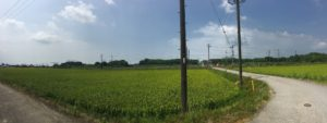 kawake-takatsuki_160814-10s