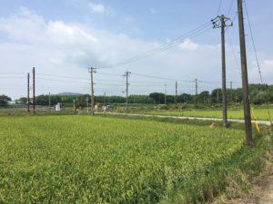 kawake-takatsuki_160814-11s