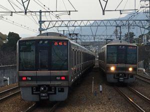sakura-shukugawa_160111s